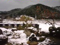 Ehime_view_2